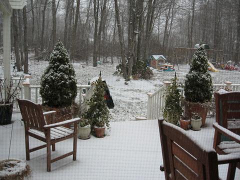 Snowinbackyard
